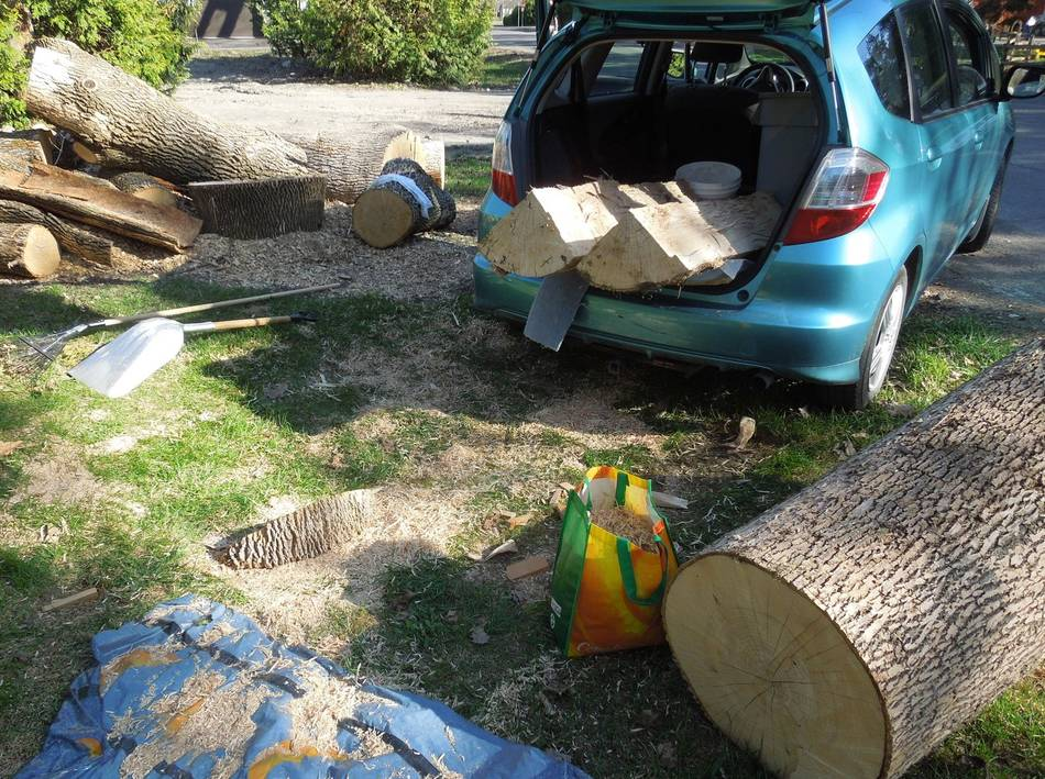 Chainsaw Milling Experiments