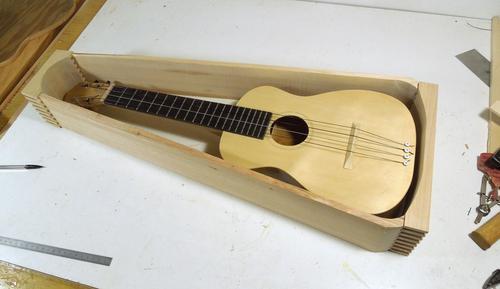 Building An Instrument Case